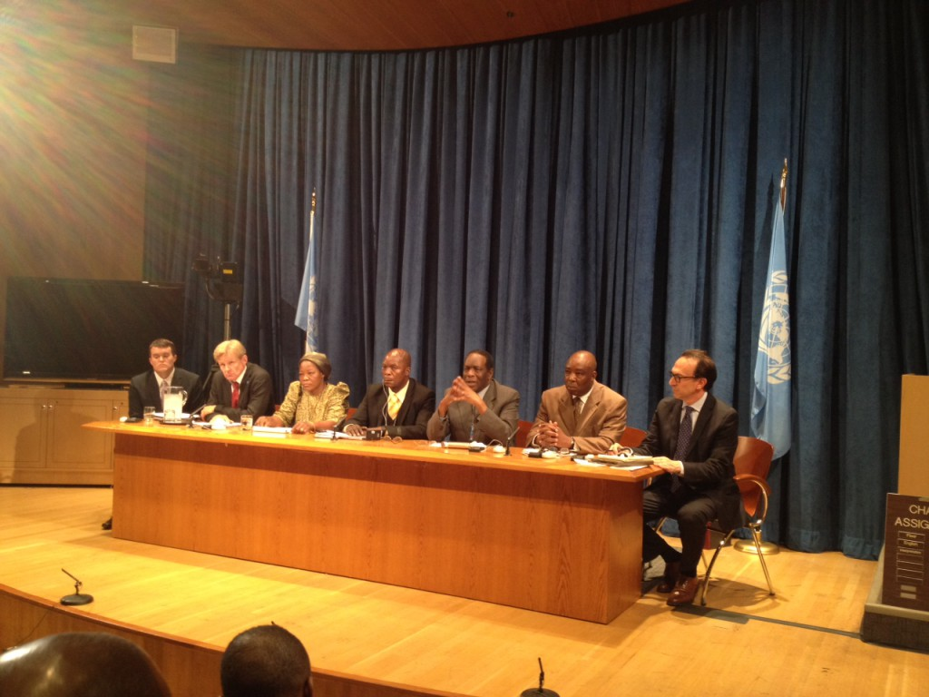 the panel at the UN